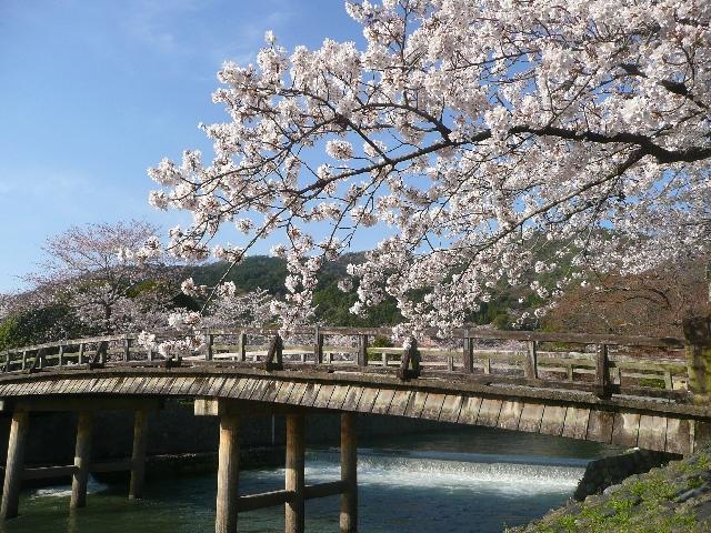 jobchange_kyoto