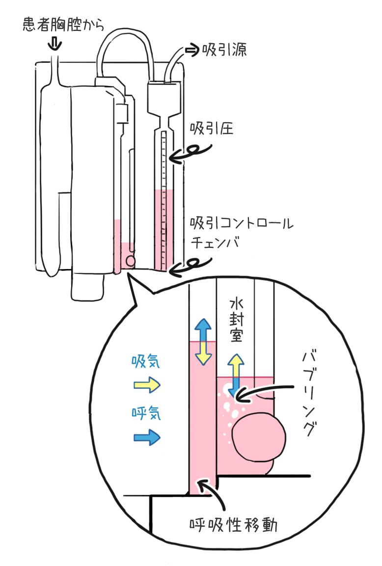 kyoukudoren